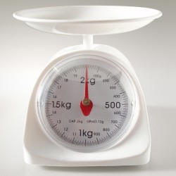 Kitchen_scale_20101110